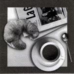 Le café des trois colombes